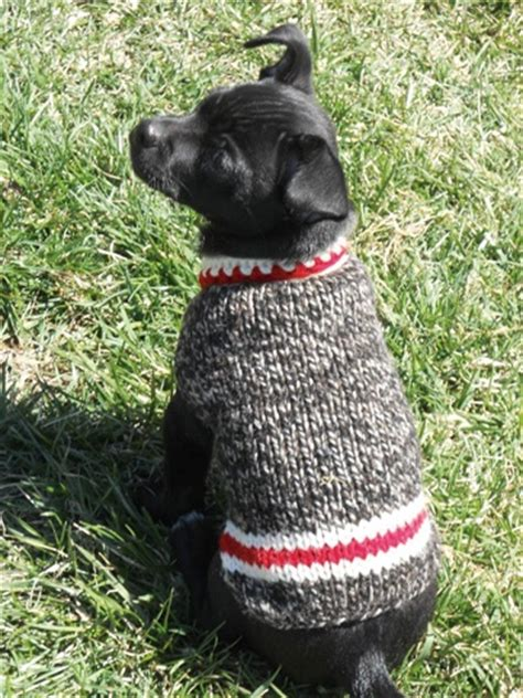 boat dog sweater 12 best images about knitting on pinterest cable