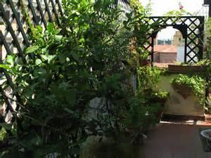 Bella Arredi Per Giardini E Terrazzi #1: clvilegno-esterni-012.jpg