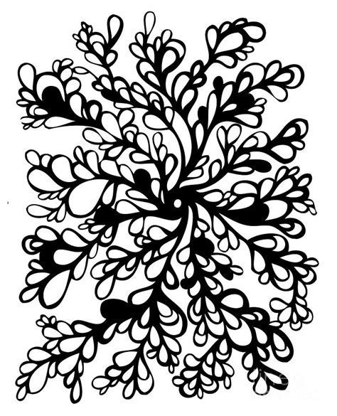 rose vines drawings   clip art
