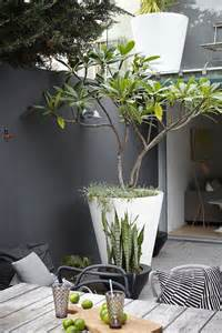 best 25 large garden pots ideas on outdoor potted plants outdoor pots and planters
