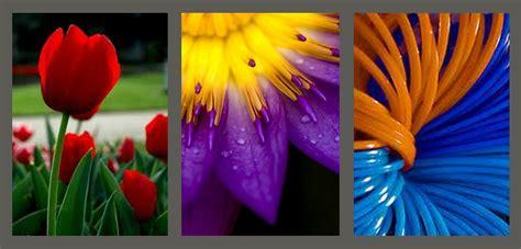 terpopuler perpaduan warna dasar kombinasi warna