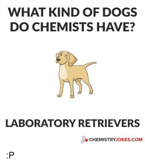 Chemistry Dog Meme - 25 best memes about chemistry joke chemistry joke memes