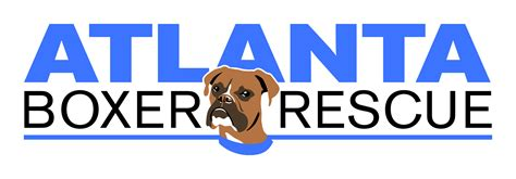 rescue atlanta eighth annual boxerstock festival scheduled for october 11
