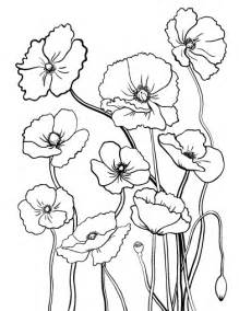 Poppy Coloring Page Pdf Pages sketch template