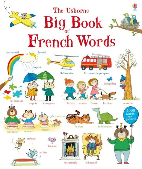 childrens french book my big book of french words at usborne children s books