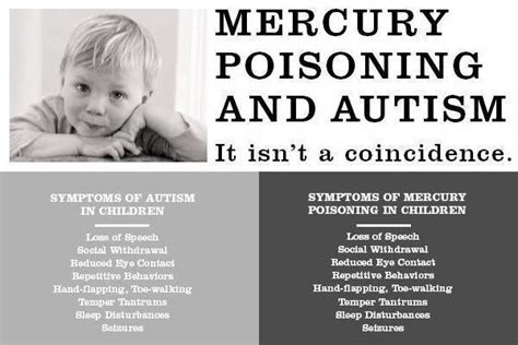 Mercury Detox Brain Damage by Mercury Myth Busting A Exposes The Top Ten Mercury Myths