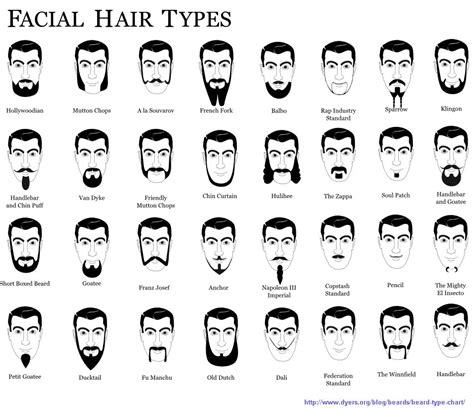 types of hair for types of faces personal image and appearance creating the new and