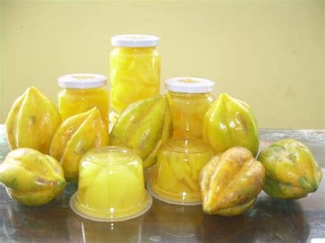 carica buah surga asal dieng  ifach