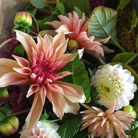 Wedding Bouquet Tips by Blooming Marvellous Wedding Bouquet Top Tips From Leading