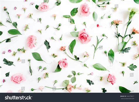 any design of flowers 100 any design of flowers entree kibbles balinese