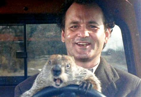 groundhog day larry mercury retrograde jan 21 feb 11th it s groundhog day