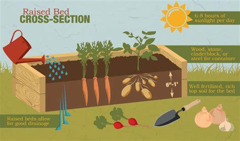 a guide to building raised gardening beds fix com