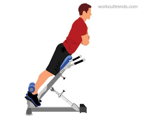 hyperextensions without bench how to do back extensions hyperextensions workouttrends com