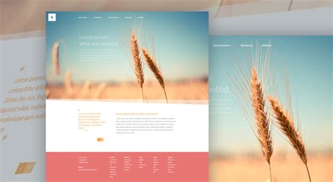 high quality free website templates 20 free high quality website photoshop templates