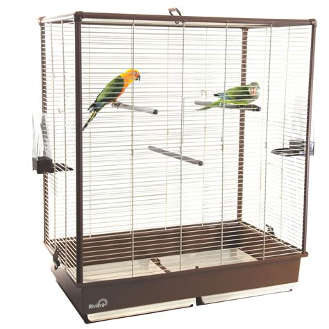 medium parrot bird cages bird cages
