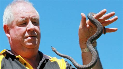 the puppy store st george snakes alive at your local pet store st george sutherland shire leader