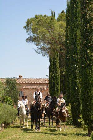 la caminata monteriggioni borgo de brandi desde 81 558 monteriggioni italia