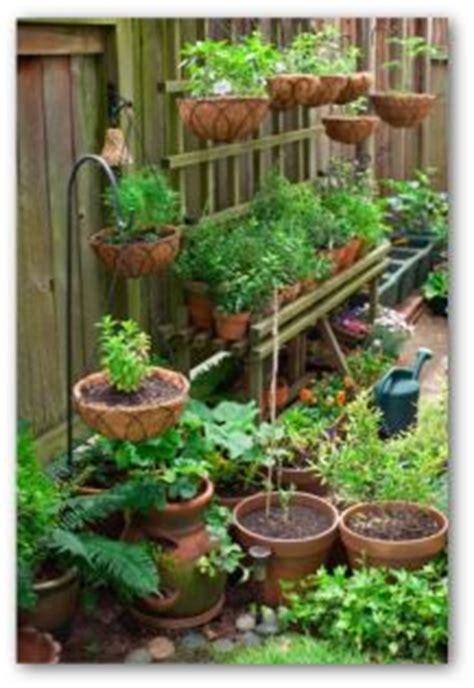 Flower Seeds For Hanging Baskets - small vegetable garden plans and ideas