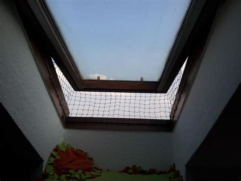fensterbrett dachfenster fenstersicherung f 252 r dachfenster katzen forum
