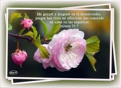 imagenes de rosas con versos versiculos biblicos salmos