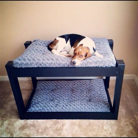 Bunk Bed For Dogs Simple Bunk Beds Zoey Pinterest Bunk Bed