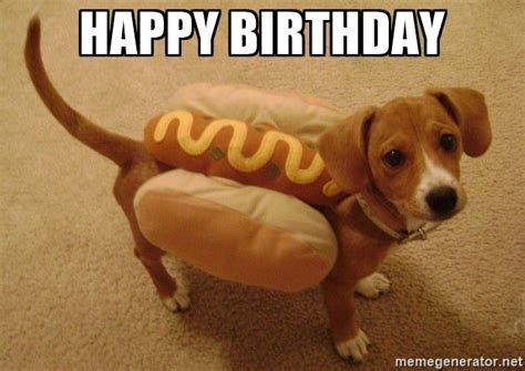 Happy Birthday Meme Dog - 25 best ideas about happy birthday dog meme on pinterest