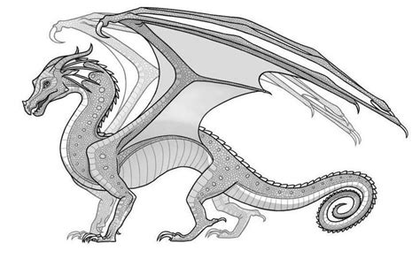 rainwings dragons coloring pages google search wings
