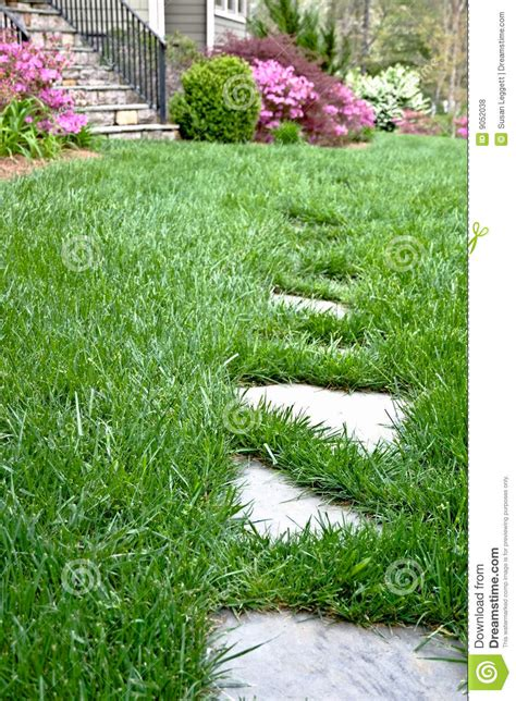 stepping stones   grass stock photo image