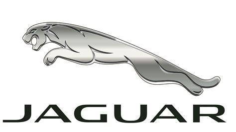 jaguar logo jaguar logo zeichen auto geschichte