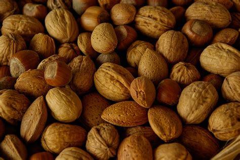 alimenti contengono biotina biotina gli alimenti contengono pi 249 vitamina h