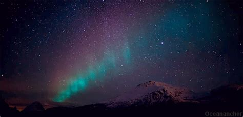 imagenes gif neon northern lights night gif find share on giphy