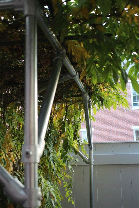 wisteria support trellis projects to try pinterest wisteria pergolas and trellis