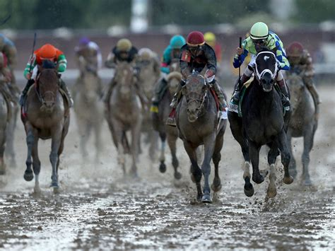 starting gate 2017 kentucky derby pictures cbs news