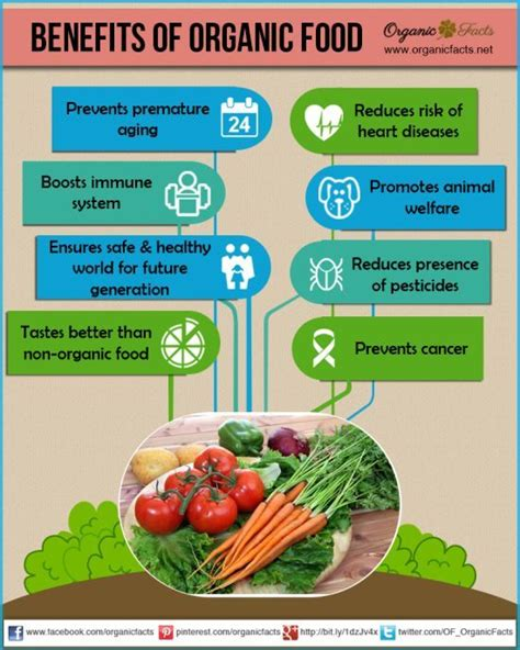 best organic food best 25 organic food stores ideas on organic what are organic foods and