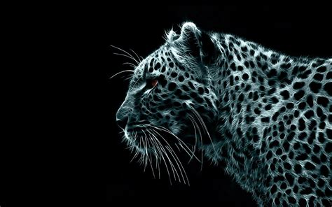 wallpaper mac leopard hd wallpapers backgrounds leopard snow mac wallpaper cool