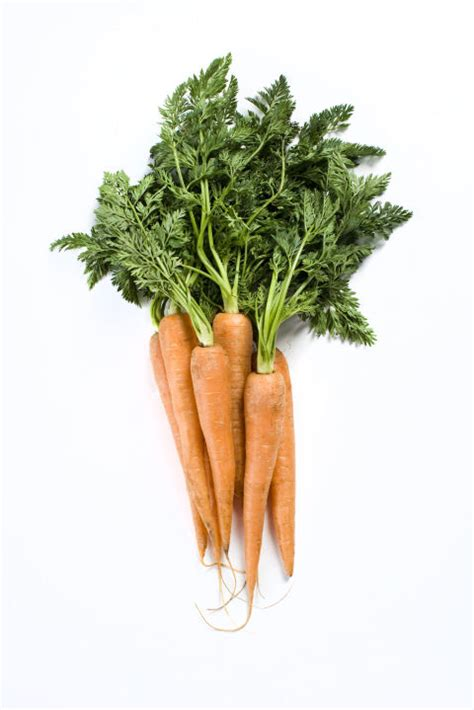 5 vegetables that are healthier cooked 8 vegetables that are healthier cooked delish