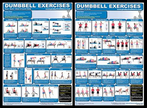 dumbbell exercises diagrams 145 best images about fitness posters that get you in