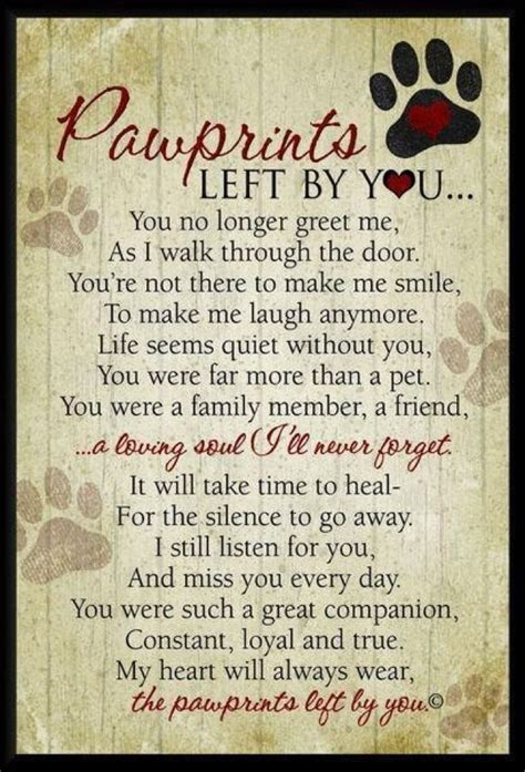 pet loss quotes quotes mourning support   pinterest rainbow bridge pets