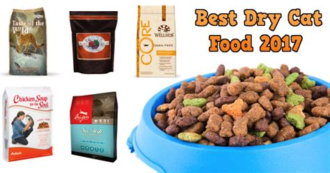 best food brands 2017 top cat food brands 2017 cats