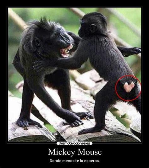 mensajes subliminales mickey mouse mickey mouse desmotivaciones