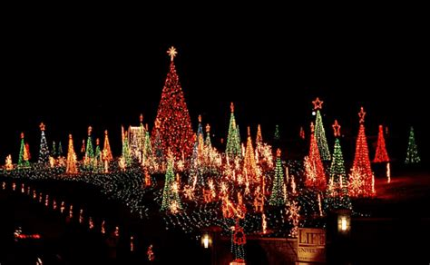 5 best christmas light displays in georgia