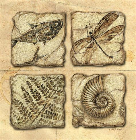 Arts And Crafts Ideas For Home Decor fossils painting by jq licensing