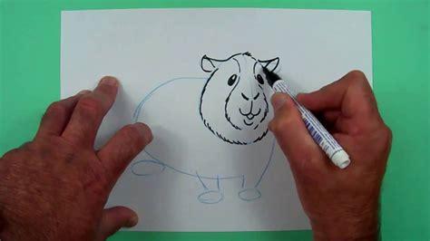 wie zeichnet eine wie zeichnet ein meerschweinchen zeichnen f 252 r