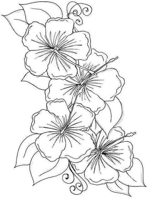 flower to color hibiscus flower coloring pages and print
