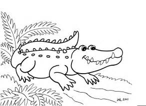 Free Printable Alligator Coloring Pages For Kids sketch template