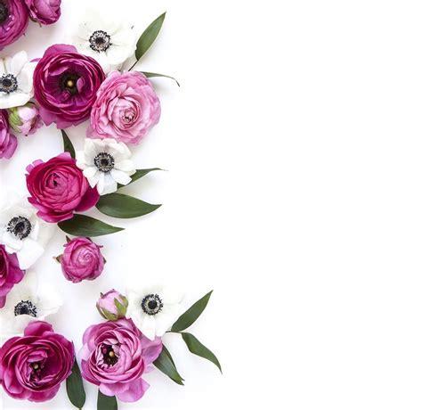 Wallpaper Bunga 545 http floristsurabaya99 co id 2017 02 toko bunga