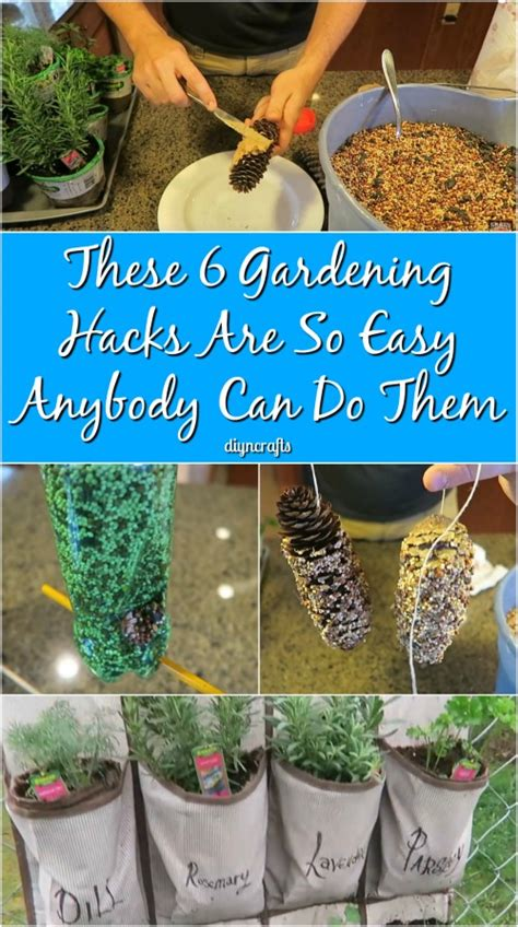 Gardening Hacks These 6 Gardening Hacks Are So Easy Anybody Can Do Them