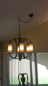 swag lights do not like swag and hook on new chandelier need ideas