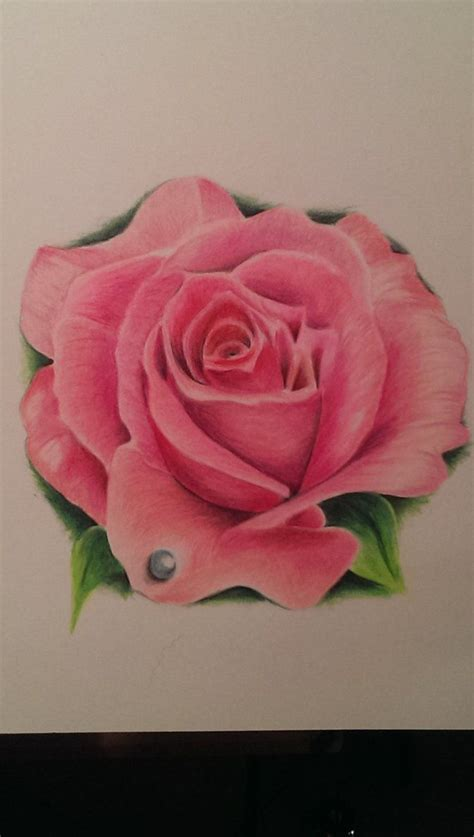 hot pink rose tattoo meanings purple buscar con tatoo