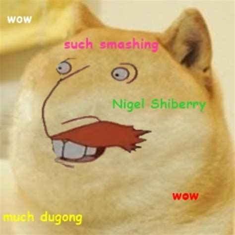 Doge Know Your Meme - so thornberry doge know your meme